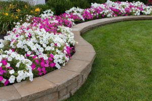 pavers-landscaping