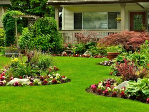 landscaping-4